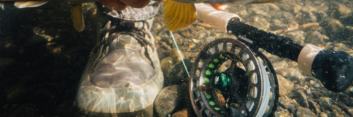 Sage Flayfish