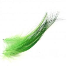 Пір'я чаплі CTFC Burnt Heron Feathers, зелені (Green)