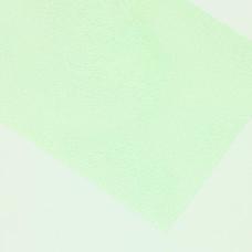 Плівка для спинок і тіла D's Flies Dura Skin, світло-зелена (INSECT GREEN)