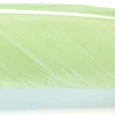 Пір'я індичі з біоти Hareline Turkey Biot Quills, блідо-оливкові (PALE OLIVE)
