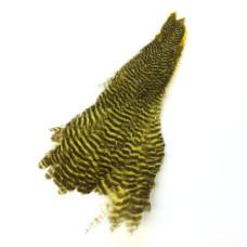 Скальп курки Keough's Grizzly Hen Neck, жовтий (YELLOW)
