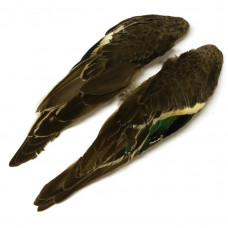 Крила чирка Veniard Teal Wing Pair