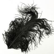 Відрізок пера страуса Wapsi Ostrich Herl, чорний (BLACK)