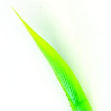 Індичі біоти Wapsi Turkey Biots, шартрез (FL CHARTREUSE)