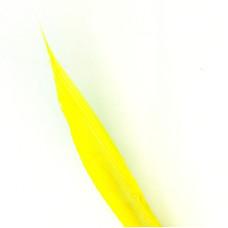 Індичі біоти Wapsi Turkey Biots, сірувато-жовті (PALE MORNING DUN)