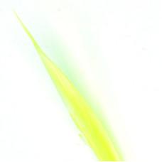 Індичі біоти Wapsi Turkey Biots, сірувато-жовті (SULPHUR YELLOW)